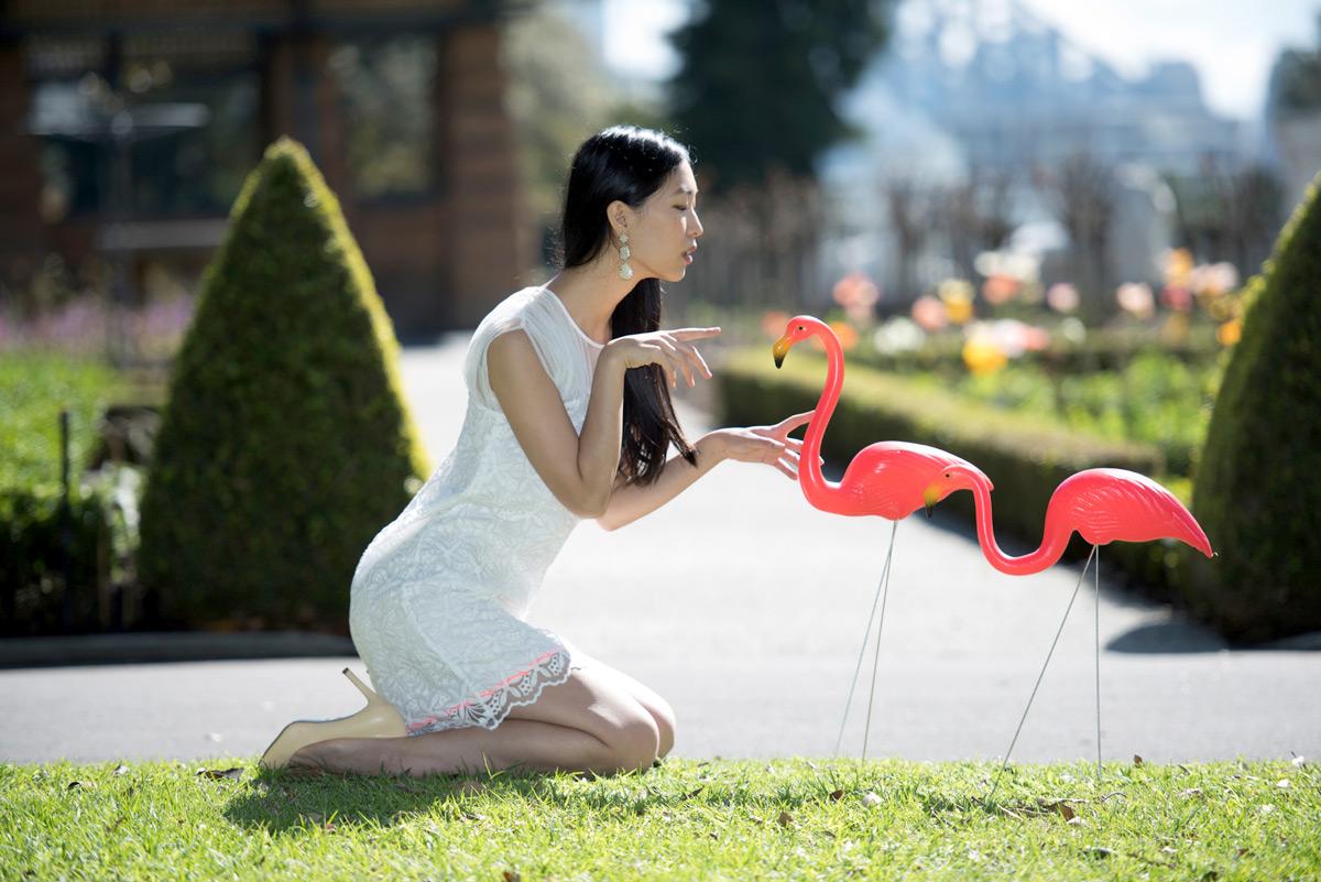 Walking my flamingos