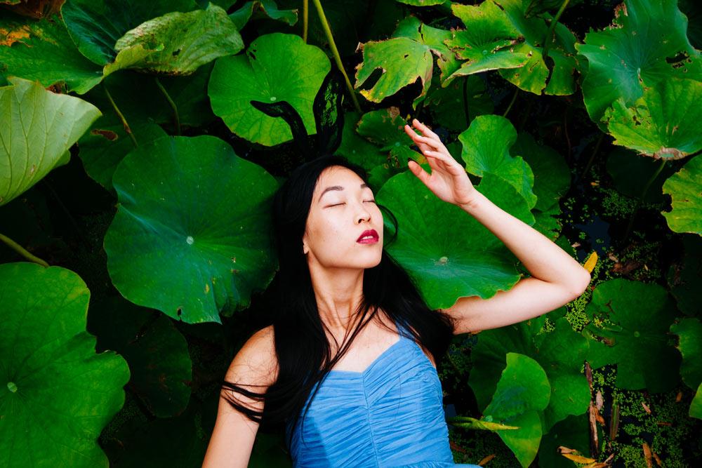 lotus pont,
