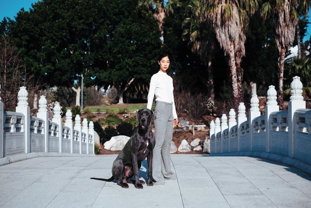 great dane photoshoot, fashion blogger, cissy zhang, grey pants